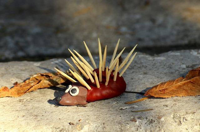 ježek z kaštanů